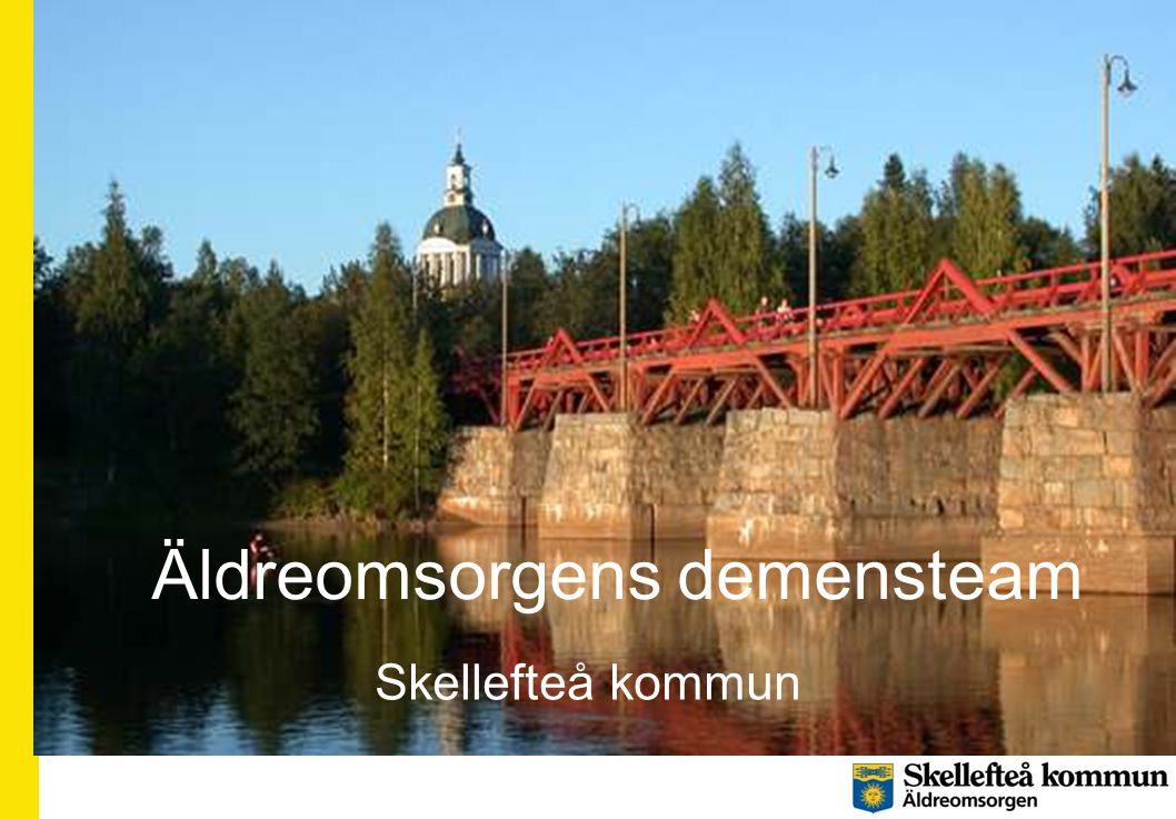 Äldreomsorgens demensteam Skellefteå kommun