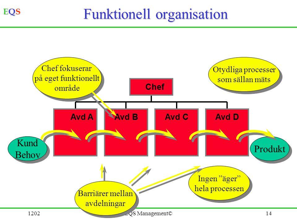 EQSEQSEQSEQS 1202EQS Management©14 Funktionell organisation Produkt Kund Behov Kund Behov Avd AAvd BAvd CAvd D Chef Otydliga processer som sällan mäts