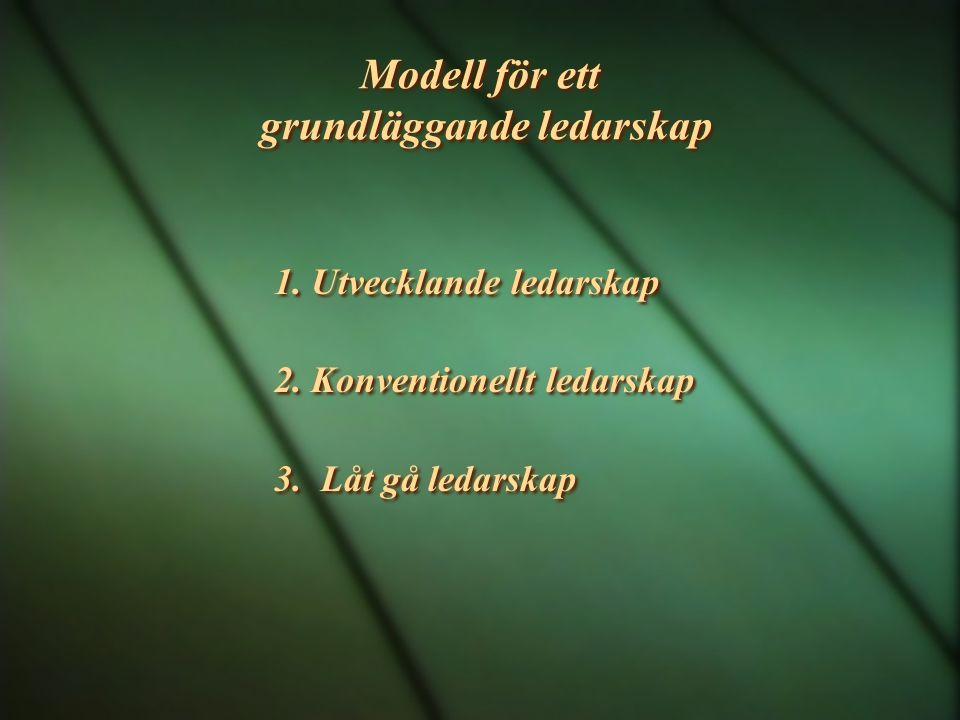 Modell för ett grundläggande ledarskap 1.Utvecklande ledarskap 2.