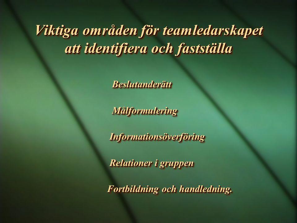 Viktiga områden för teamledarskapet att identifiera och fastställa Beslutanderätt Beslutanderätt Målformulering Målformulering Informationsöverföring Informationsöverföring Relationer i gruppen Relationer i gruppen Fortbildning och handledning.