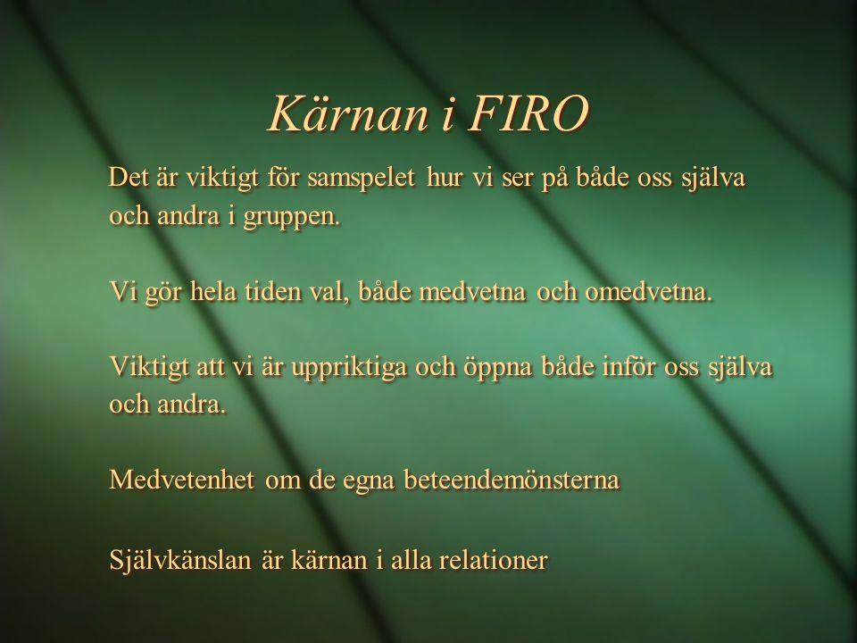 Kärnan i FIRO Det är viktigt för samspelet hur vi ser på både oss själva och andra i gruppen.