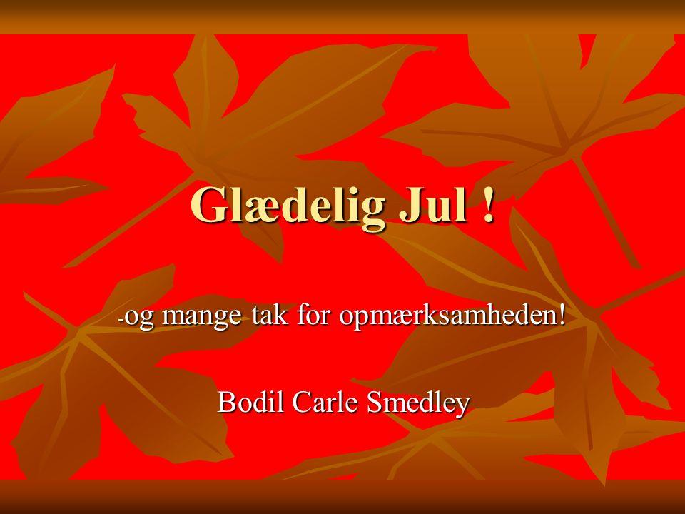 Glædelig Jul ! - og mange tak for opmærksamheden! Bodil Carle Smedley