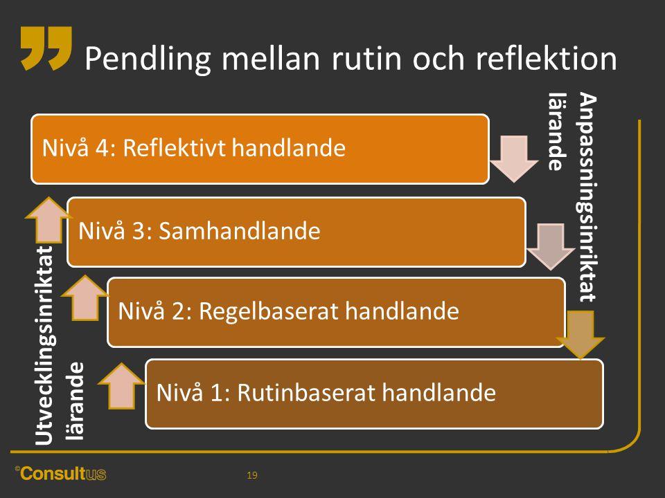 """"""" Pendling mellan rutin och reflektion 19 Anpassningsinriktatlärande Utvecklingsinriktat lärande"""
