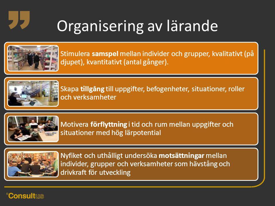 """"""" Organisering av lärande"""
