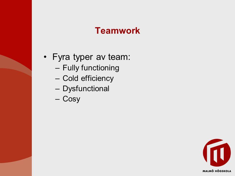 Teamwork •Fyra typer av team: –Fully functioning –Cold efficiency –Dysfunctional –Cosy