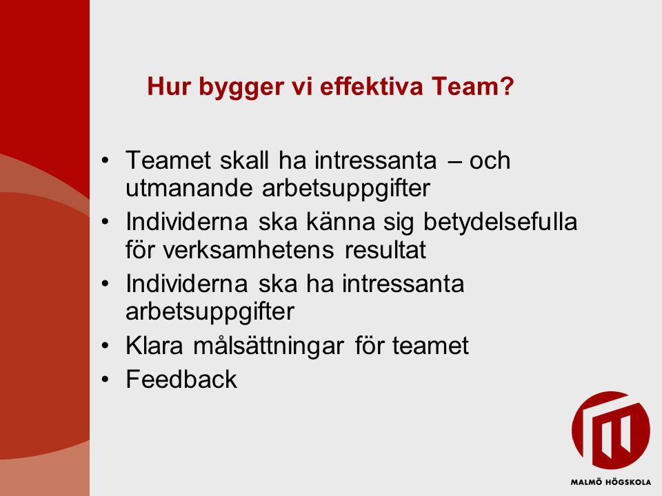 Hur bygger vi effektiva Team? •Teamet skall ha intressanta – och utmanande arbetsuppgifter •Individerna ska känna sig betydelsefulla för verksamhetens