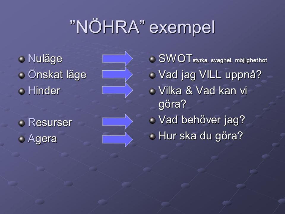 Modell (Kjell Enhager) Resurs Hinder Nuläge Agera Önskat läge