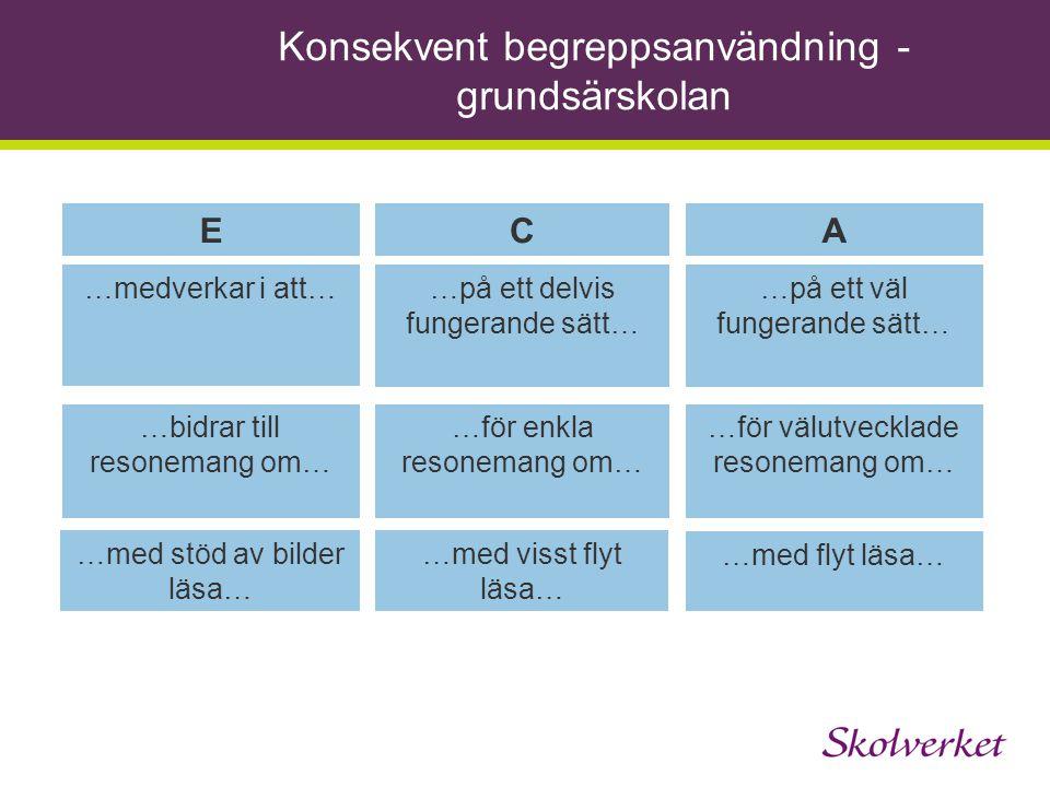 Konsekvent begreppsanvändning - grundsärskolan ECA …medverkar i att……på ett delvis fungerande sätt… …på ett väl fungerande sätt… …bidrar till resonema