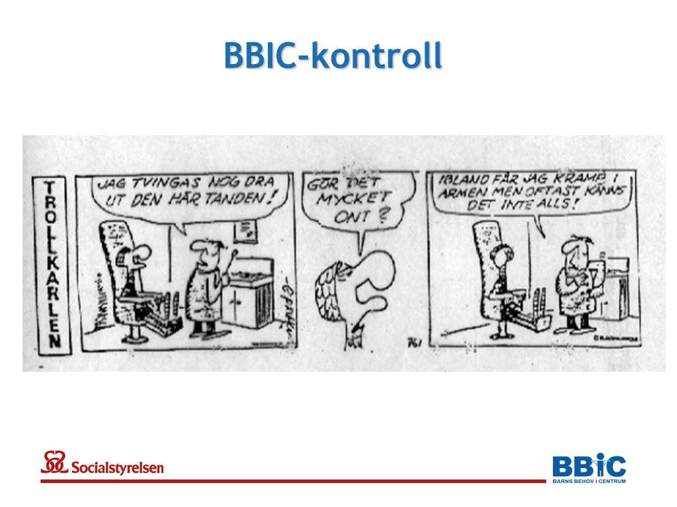BBIC-kontroll