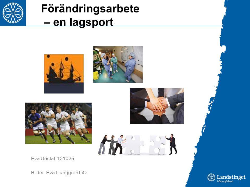 Förändringsarbete – en lagsport Eva Uustal 131025 Bilder Eva Ljunggren LiO