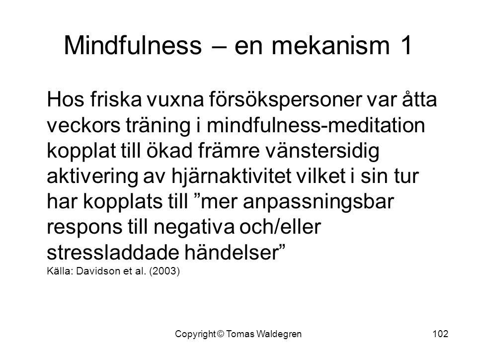Mindfulness – en mekanism 1 Hos friska vuxna försökspersoner var åtta veckors träning i mindfulness-meditation kopplat till ökad främre vänstersidig a