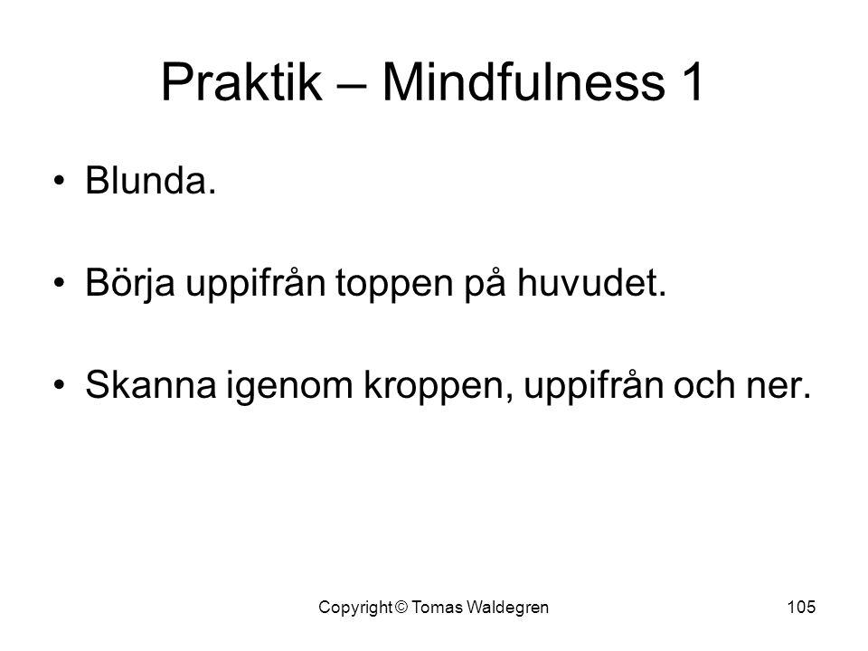 Praktik – Mindfulness 1 •Blunda. •Börja uppifrån toppen på huvudet. •Skanna igenom kroppen, uppifrån och ner. 105Copyright © Tomas Waldegren