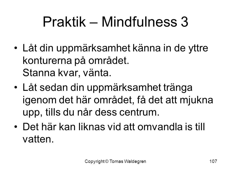 Praktik – Mindfulness 3 •Låt din uppmärksamhet känna in de yttre konturerna på området. Stanna kvar, vänta. •Låt sedan din uppmärksamhet tränga igenom