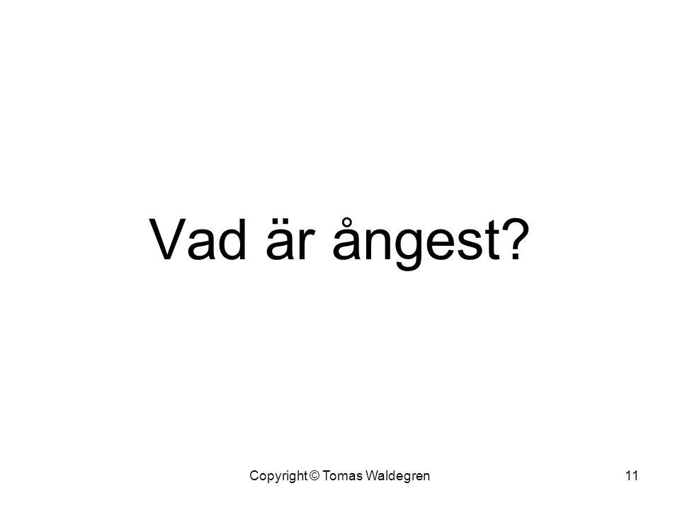 Vad är ångest? 11Copyright © Tomas Waldegren