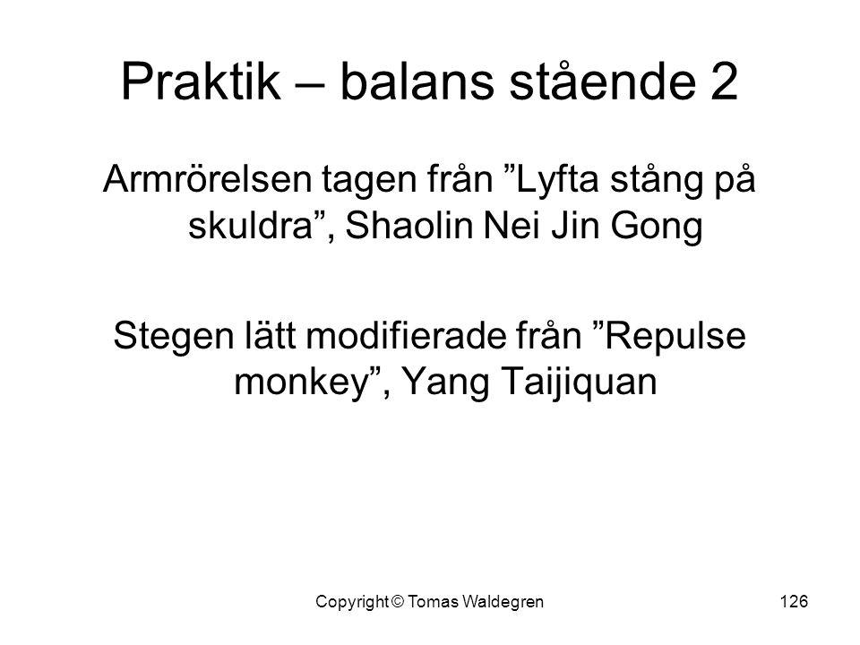 """Praktik – balans stående 2 Armrörelsen tagen från """"Lyfta stång på skuldra"""", Shaolin Nei Jin Gong Stegen lätt modifierade från """"Repulse monkey"""", Yang T"""