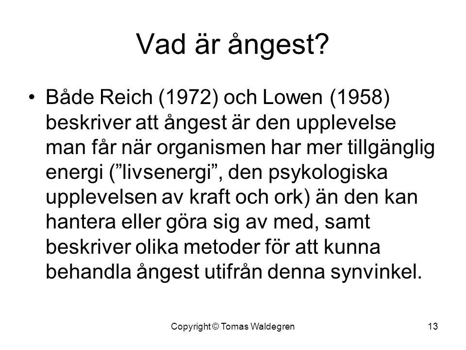 """Vad är ångest? •Både Reich (1972) och Lowen (1958) beskriver att ångest är den upplevelse man får när organismen har mer tillgänglig energi (""""livsener"""