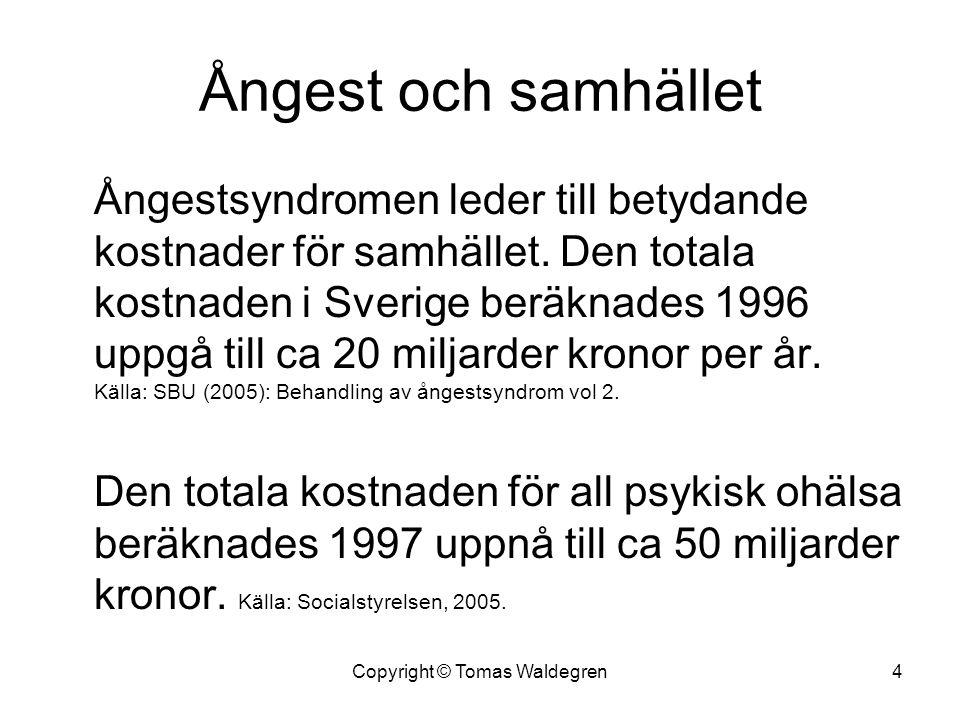 Ångest och samhället Ångestsyndromen leder till betydande kostnader för samhället. Den totala kostnaden i Sverige beräknades 1996 uppgå till ca 20 mil
