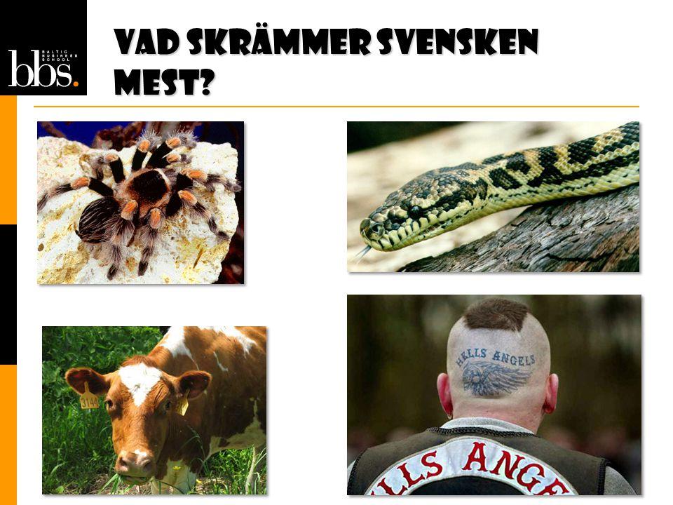 Vad skrämmer svensken mest
