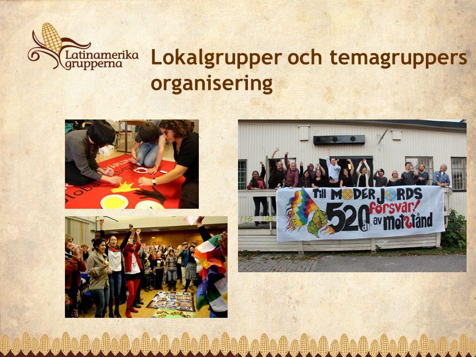 Lokalgrupper och temagruppers organisering