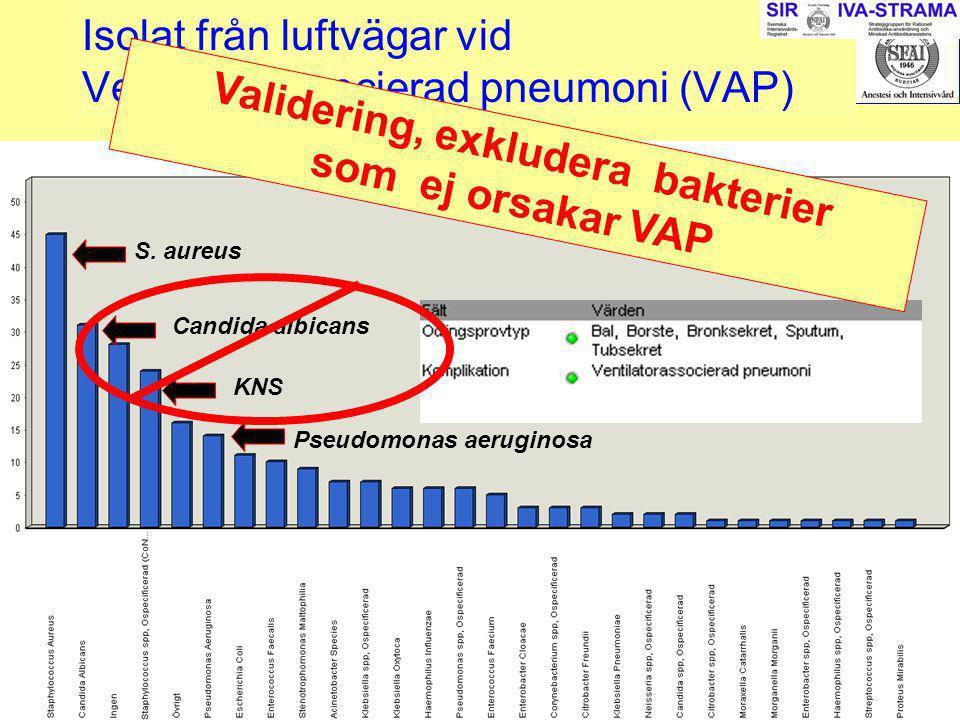 2007-03-15--16SIR243 Isolat från luftvägar vid Ventilatorassocierad pneumoni (VAP) S. aureus Candida albicans Pseudomonas aeruginosa KNS Validering, e