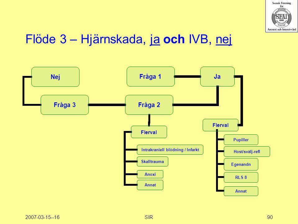 2007-03-15--16SIR90 Flöde 3 – Hjärnskada, ja och IVB, nej