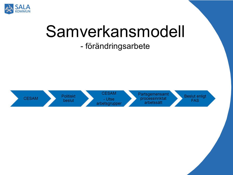 CESAM Politiskt beslut CESAM - Utse arbetsgrupper Partsgemensamt processinriktat arbetssätt Beslut enligt FAS Samverkansmodell - förändringsarbete