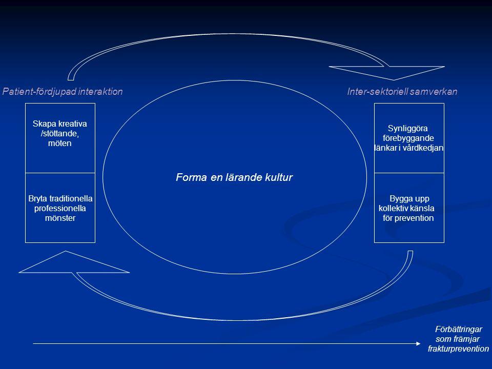 Patient-fördjupad interaktionInter-sektoriell samverkan Synliggöra förebyggande länkar i vårdkedjan Bygga upp kollektiv känsla för prevention Bryta traditionella professionella mönster Skapa kreativa /stöttande, möten Förbättringar som främjar frakturprevention Forma en lärande kultur