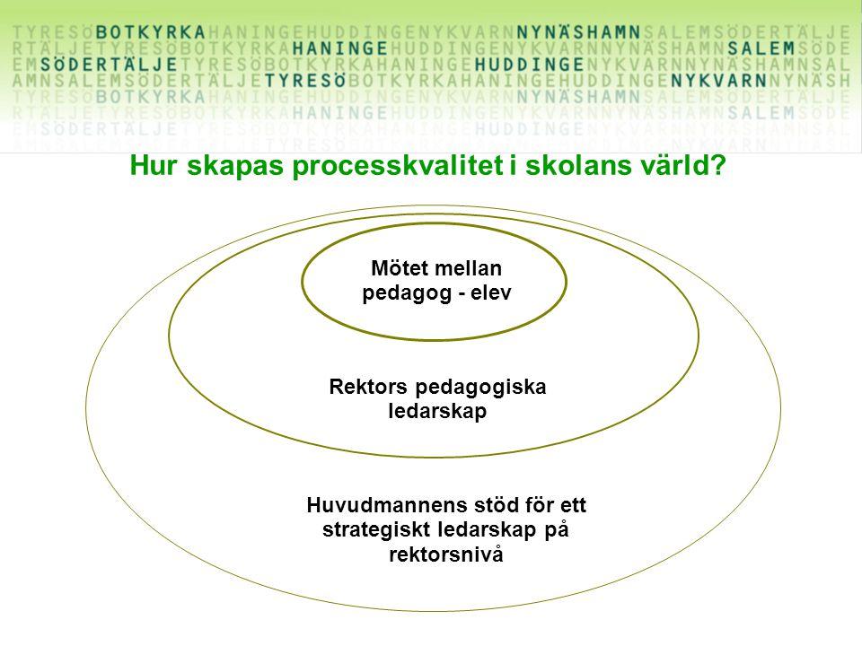 Hur skapas processkvalitet i skolans värld.