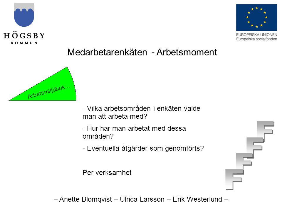 – Anette Blomqvist – Ulrica Larsson – Erik Westerlund – Medarbetarenkäten - Arbetsmoment - Vilka arbetsområden i enkäten valde man att arbeta med.