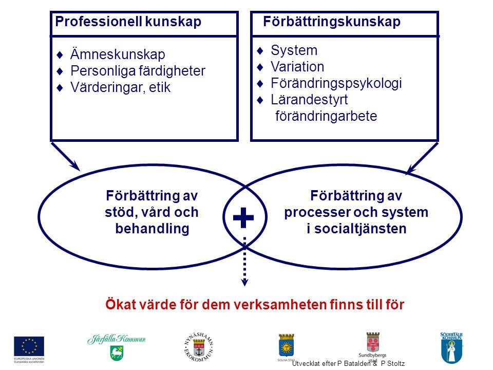 5 Professionell kunskap  Ämneskunskap  Personliga färdigheter  Värderingar, etik Förbättringskunskap  System  Variation  Förändringspsykologi 