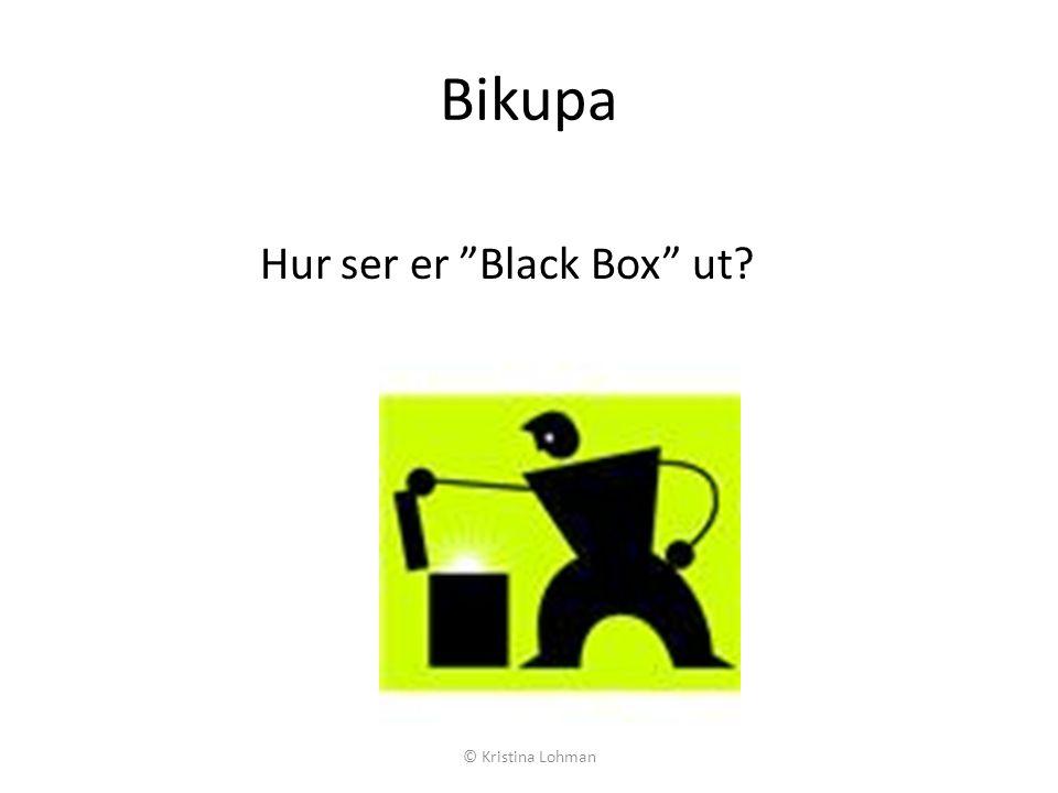 Bikupa Hur ser er Black Box ut? © Kristina Lohman