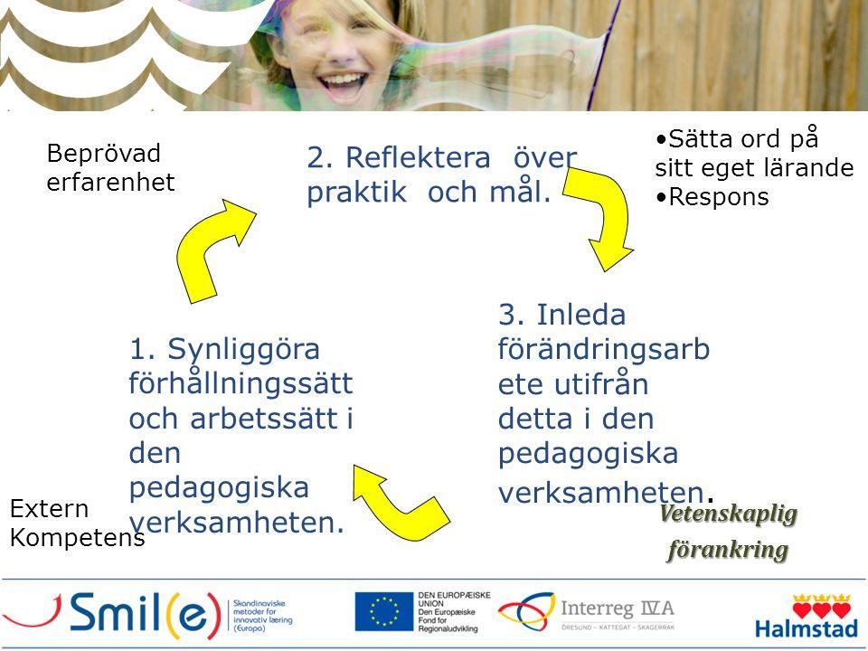 Vetenskapligförankring 1. Synliggöra förhållningssätt och arbetssätt i den pedagogiska verksamheten. 2. Reflektera över praktik och mål. 3. Inleda för