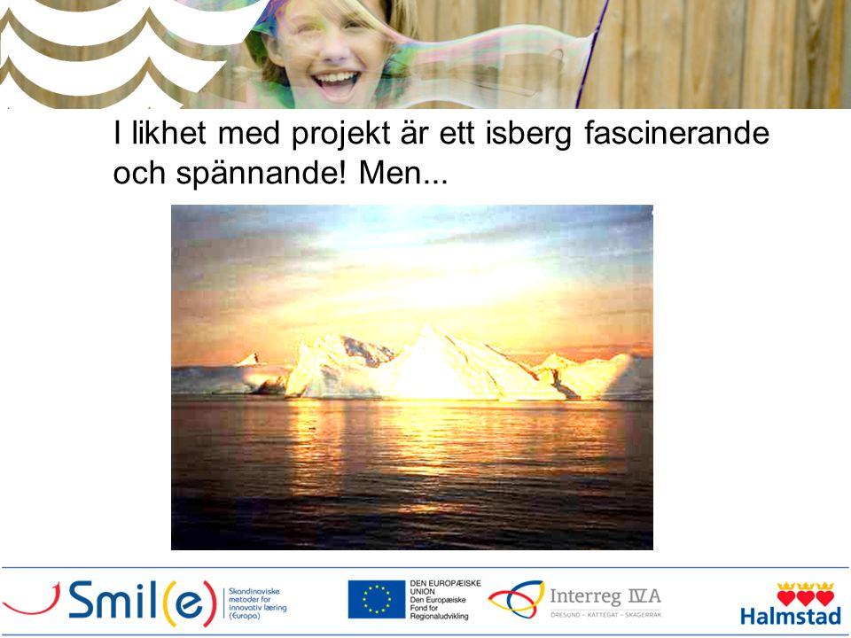 I likhet med projekt är ett isberg fascinerande och spännande! Men...
