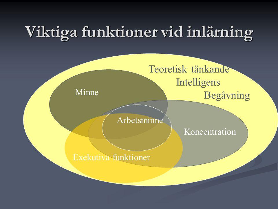 Viktiga funktioner vid inlärning Minne Koncentration Exekutiva funktioner Arbetsminne Teoretisk tänkande Intelligens Begåvning