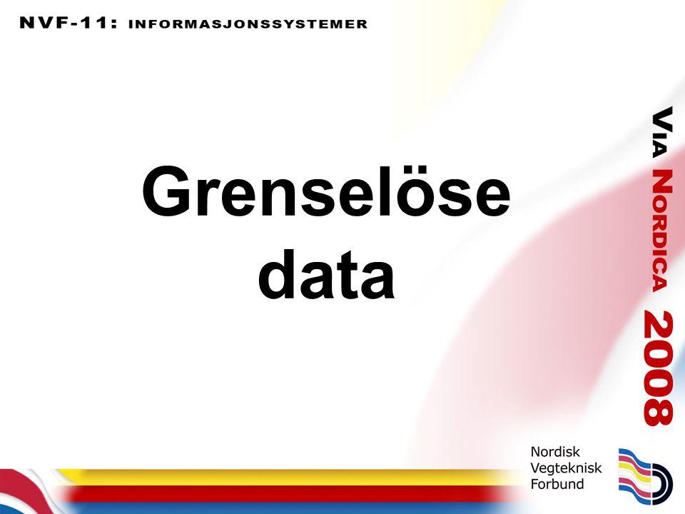 Grenselöse data