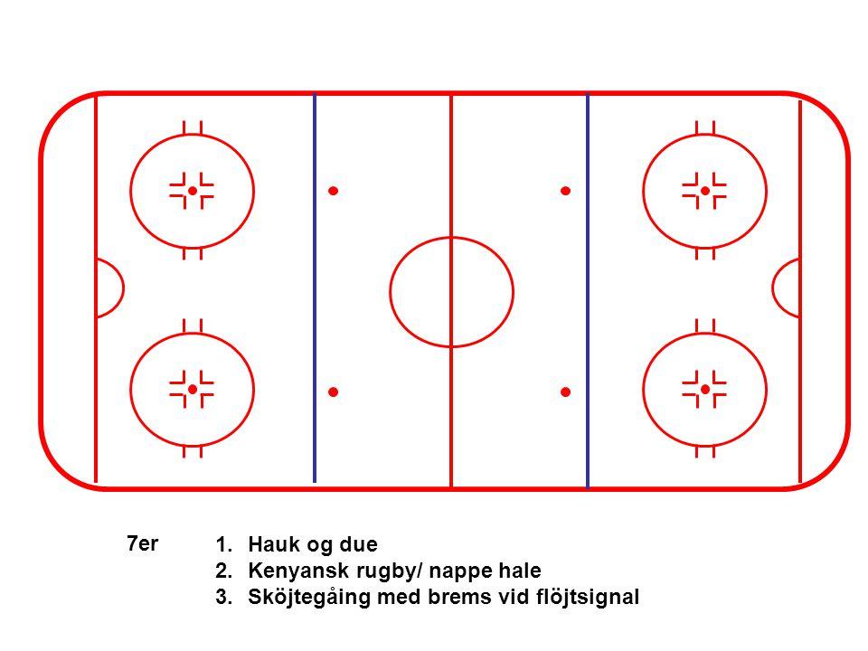 7er 1.Hauk og due 2.Kenyansk rugby/ nappe hale 3.Sköjtegåing med brems vid flöjtsignal