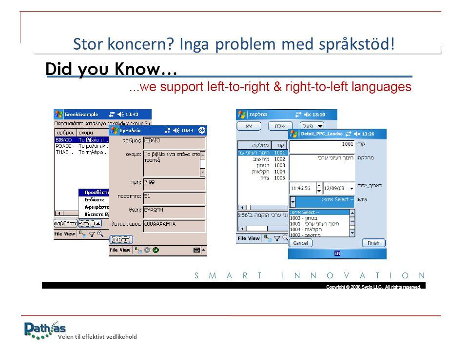 Veien til effektivt vedlikehold Stor koncern Inga problem med språkstöd!