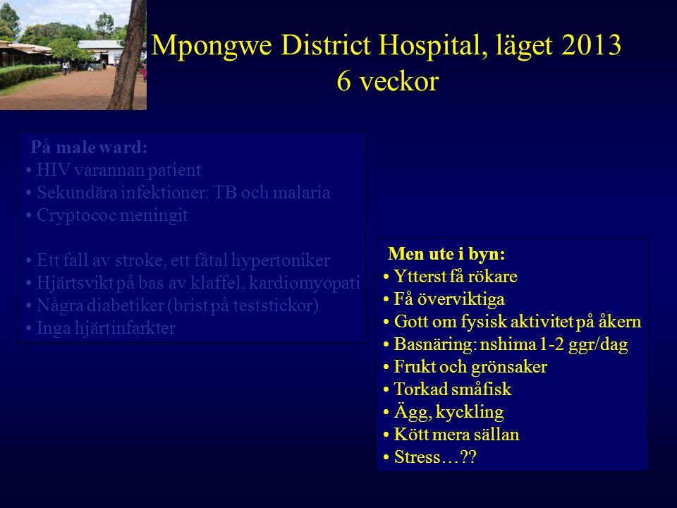 Mpongwe District Hospital, läget 2013 6 veckor På male ward: HIV varannan patient Sekundära infektioner: TB och malaria Cryptococ meningit Ett fall av