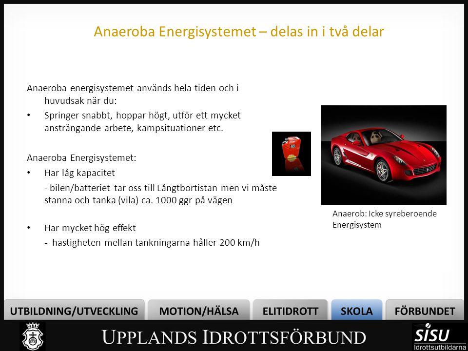 Anaeroba Energisystemet – delas in i två delar Anaeroba energisystemet används hela tiden och i huvudsak när du: Springer snabbt, hoppar högt, utför e