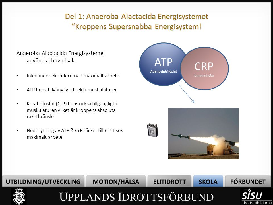 "Del 1: Anaeroba Alactacida Energisystemet ""Kroppens Supersnabba Energisystem! Anaeroba Alactacida Energisystemet används i huvudsak: Inledande sekunde"