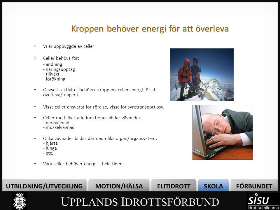 Energisystemens samarbete Inget av de energivande systemen ansvarar ensamt för den totala energileveransen Beroende på aktivitetens intensitet (sömn eller maximalt sprintarbete) kommer olika energisystem ansvara för den huvudsakliga energileveransen Bilden visar hur energisystemen samarbetar vid maximalt arbete - Tänk att du ska springa (maximalt) efter bussen som går om 5 min