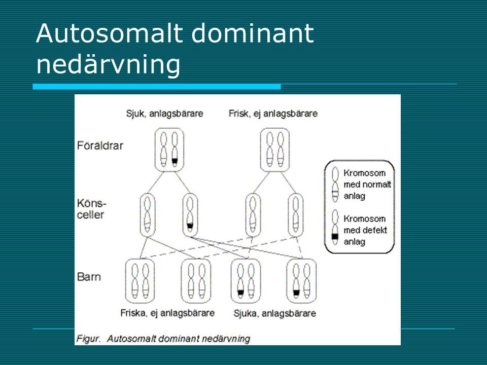 Autosomalt dominant nedärvning