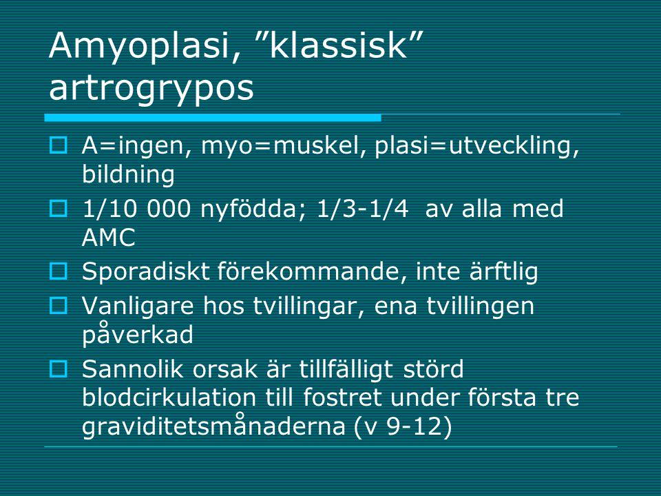 """Amyoplasi, """"klassisk"""" artrogrypos  A=ingen, myo=muskel, plasi=utveckling, bildning  1/10 000 nyfödda; 1/3-1/4 av alla med AMC  Sporadiskt förekomma"""