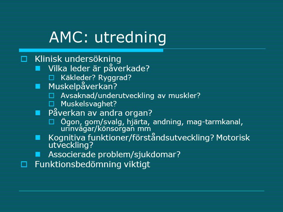 AMC: utredning  Klinisk undersökning Vilka leder är påverkade?  Käkleder? Ryggrad? Muskelpåverkan?  Avsaknad/underutveckling av muskler?  Muskelsv
