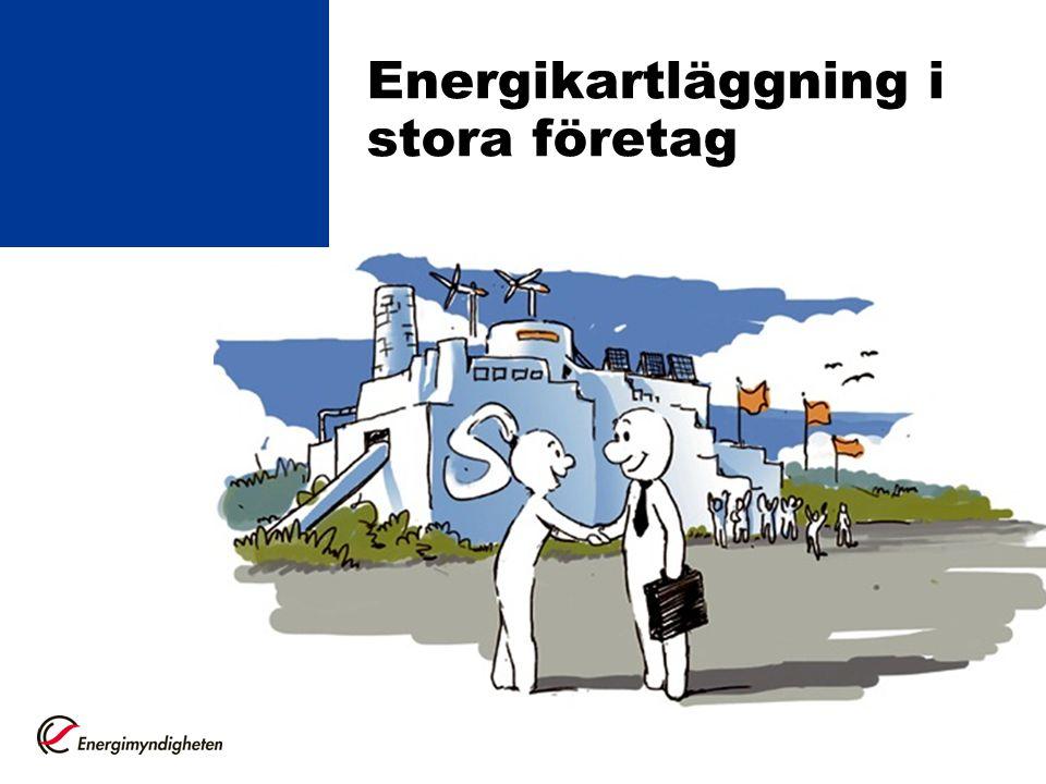 Lagen om energikartläggning Direkt effekt av Energieffektiviseringsdirektivet.