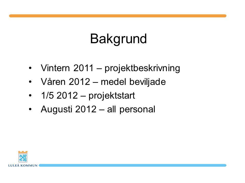 Bakgrund Vintern 2011 – projektbeskrivning Våren 2012 – medel beviljade 1/5 2012 – projektstart Augusti 2012 – all personal