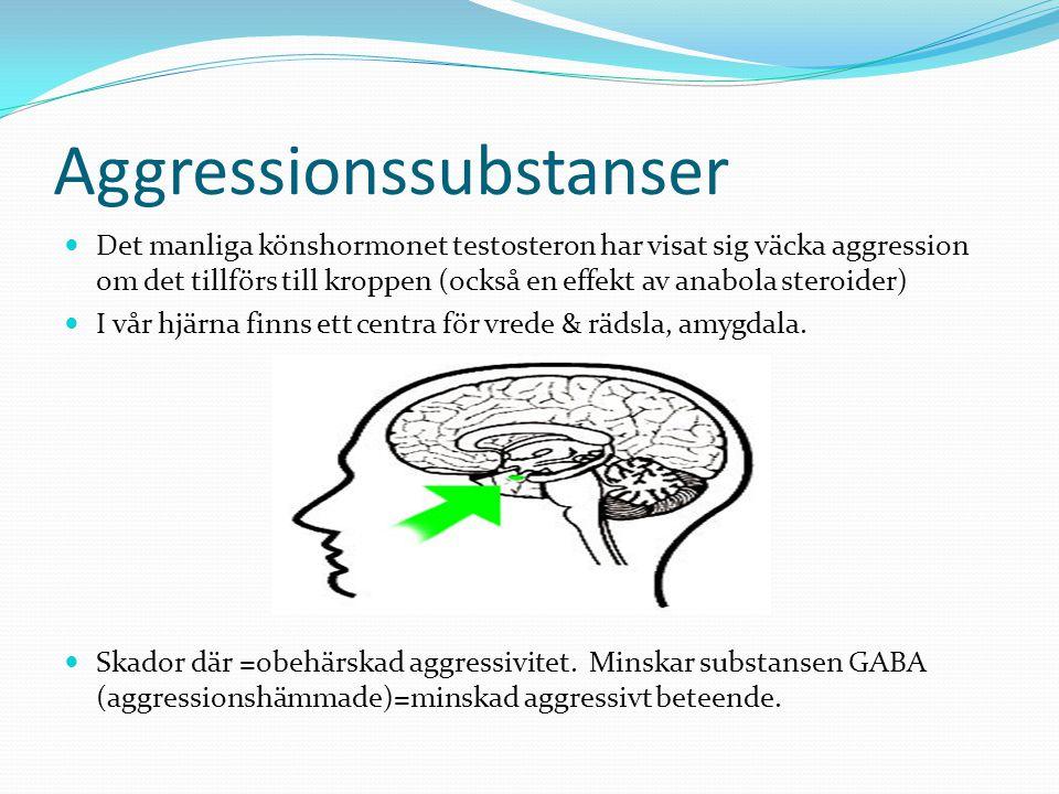 Aggressionssubstanser Det manliga könshormonet testosteron har visat sig väcka aggression om det tillförs till kroppen (också en effekt av anabola steroider) I vår hjärna finns ett centra för vrede & rädsla, amygdala.