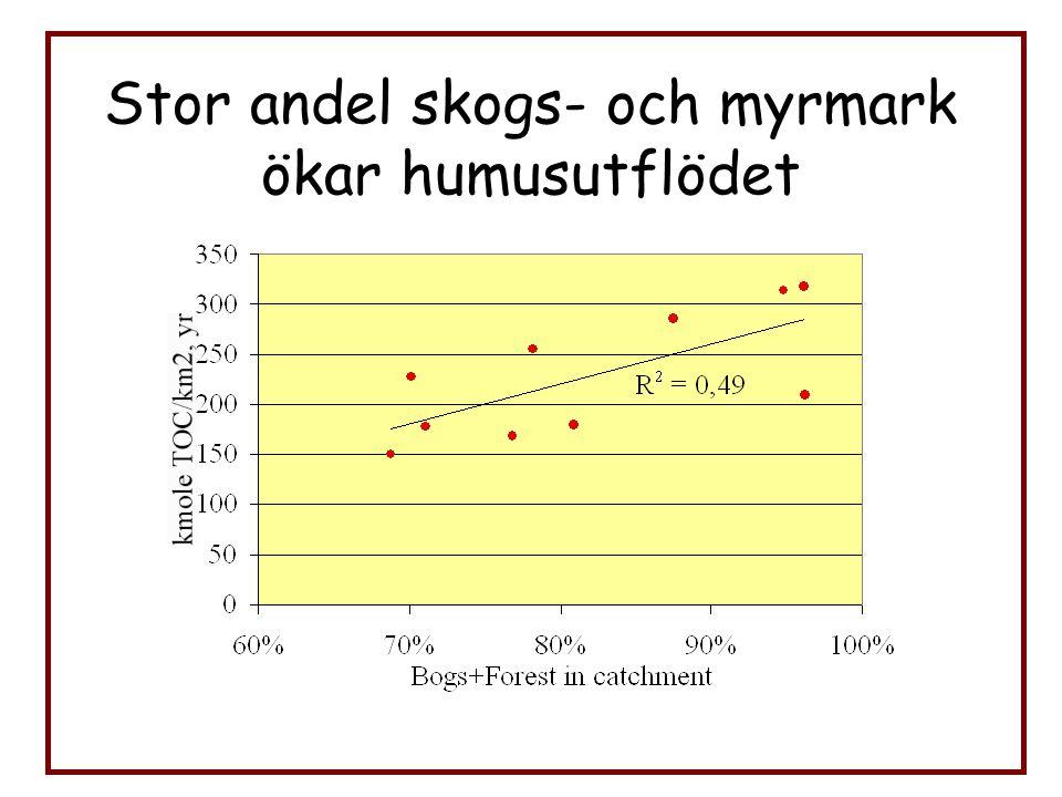 Utströmningsområdena kan även vara tydliga i den lilla skalan. Löfgren & Laudon, 2004