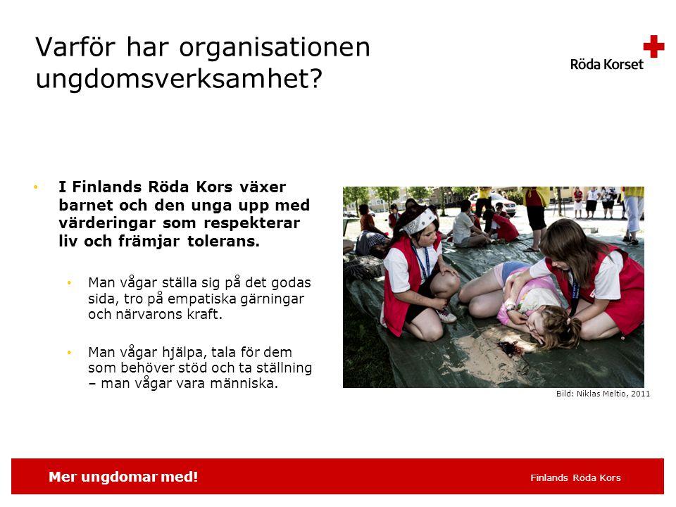 Mer ungdomar med. Finlands Röda Kors Varför har organisationen ungdomsverksamhet.