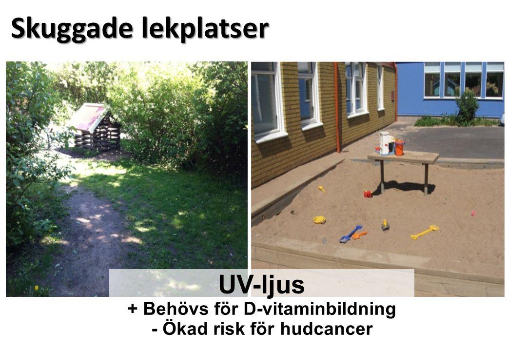 Skuggade lekplatser UV-ljus + Behövs för D-vitaminbildning - Ökad risk för hudcancer